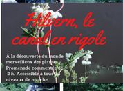 HILVERN, LE CANAL EN RIGOLE - PROMENADE COMMENTÉE